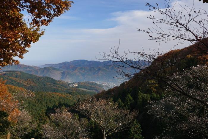 桜山公園 -群馬県藤岡市鬼石町