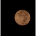 「月を見る」と言う宿題。