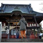 藤岡 諏訪神社で初詣。