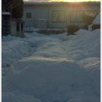記録的な大雪の残した爪後はとても大きく。