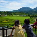 道の駅 中山盆地で田んぼアート。-2017夏・日帰り家族旅行