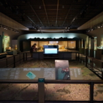 かみつけの里博物館で古代の神秘をお勉強。