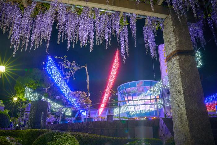 ふじの咲く丘・ライトアップ -群馬県藤岡市