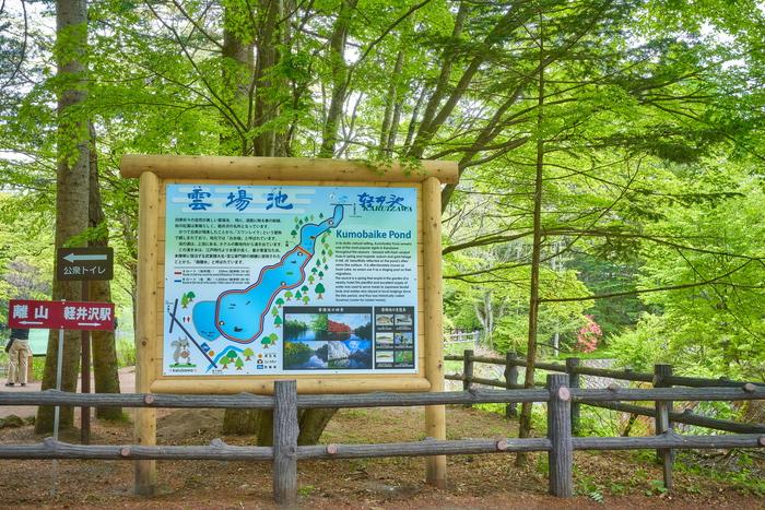 新緑の雲場池 -長野県北佐久郡軽井沢町