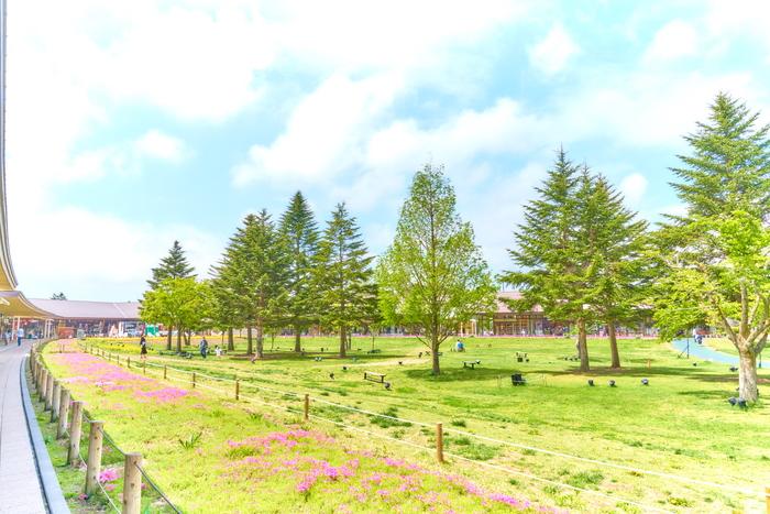 新緑の軽井沢アウトレット -長野県北佐久郡軽井沢町