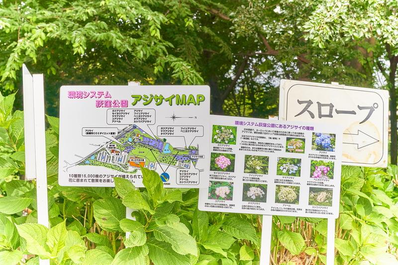 荻窪公園 -群馬県前橋市