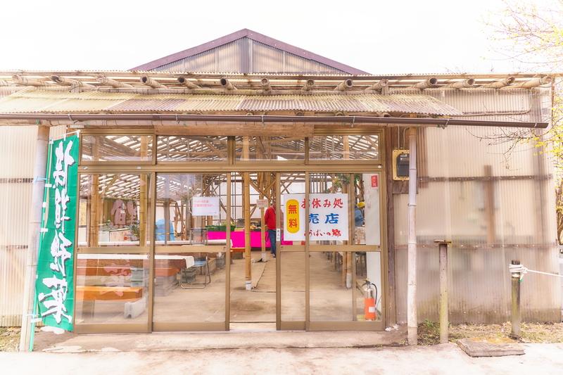 ろうばいの郷 -群馬県安中市松井田町