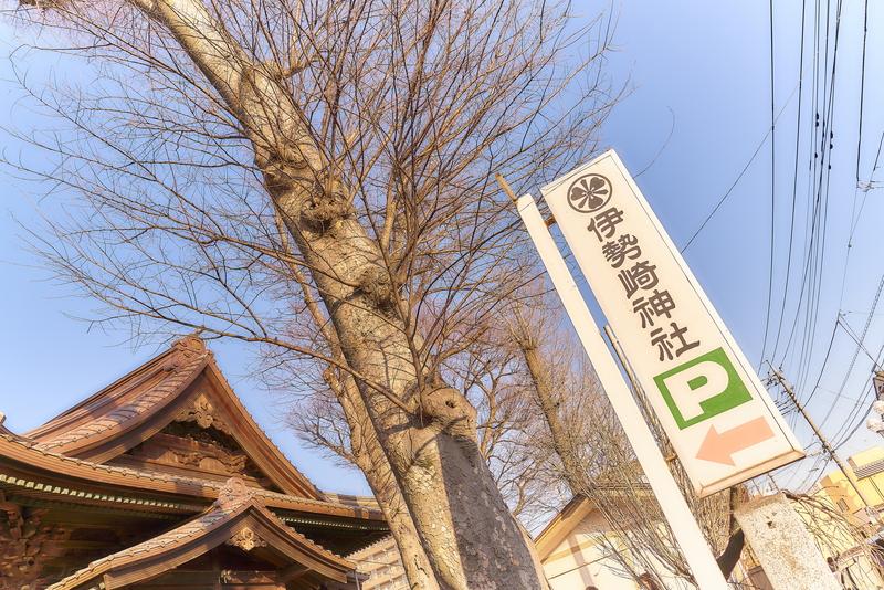 上州焼き饅祭|伊勢崎神社 -群馬県伊勢崎市
