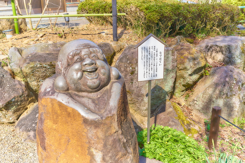 宝積寺のしだれ桜 -群馬県甘楽郡甘楽町