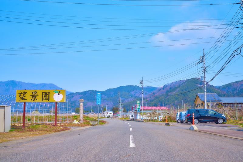 発地のヒガンザクラ -群馬県沼田市