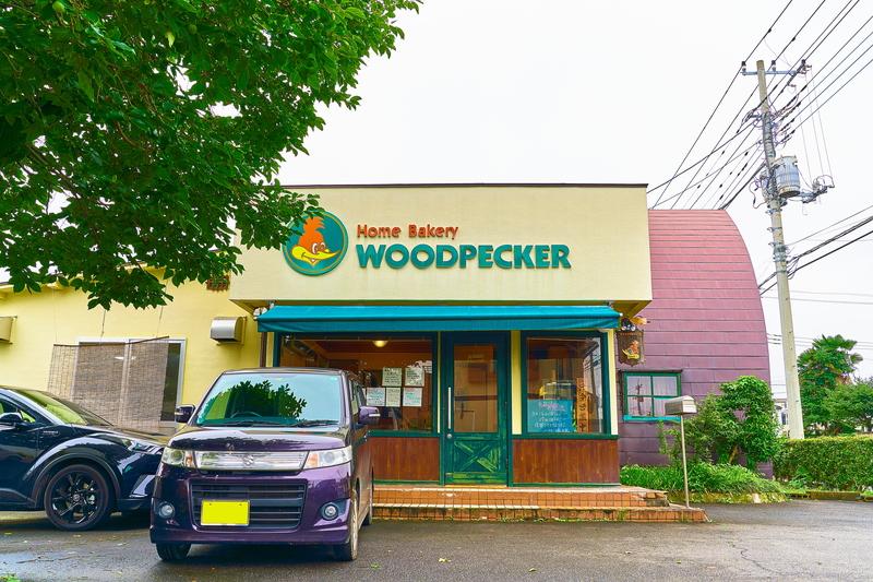 啄木鳥(WOODPECKER) -群馬県前橋市