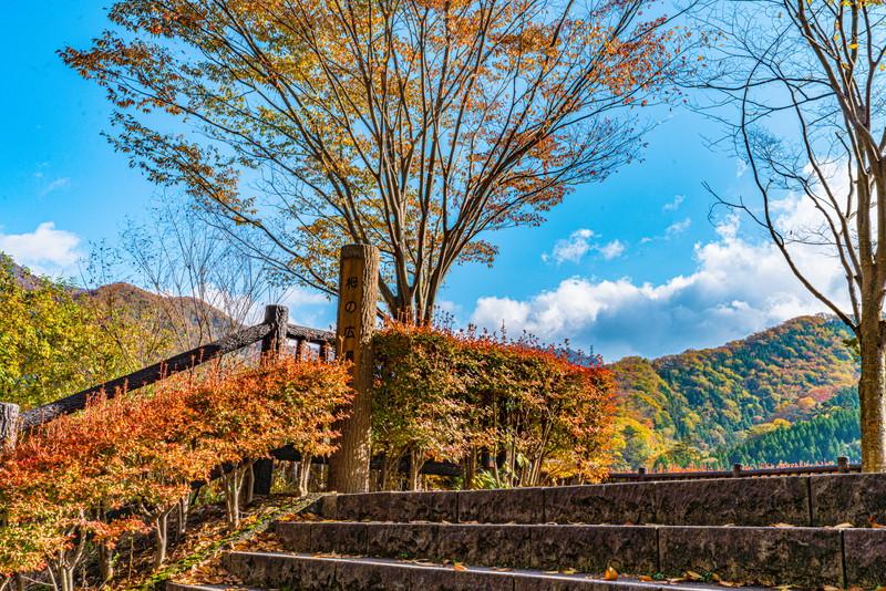 湖畔をグルっと散策しよう  広場(見晴台)から湖を眺めよう  奥四万湖のダムの周りには、  「栂(つが)の広場」「赤沢安らぎ広場」 などの見晴台や、  「稲包せせらぎ公園」などの公園を整備。
