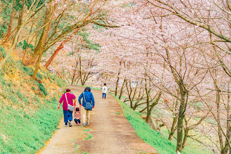 八幡山公園|群馬県甘楽郡甘楽町
