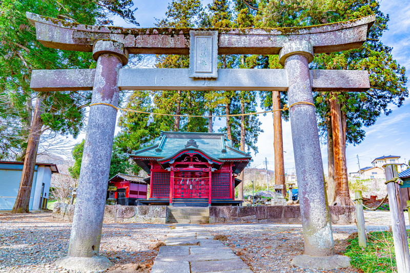 川田神社の大ケヤキ 群馬県沼田市