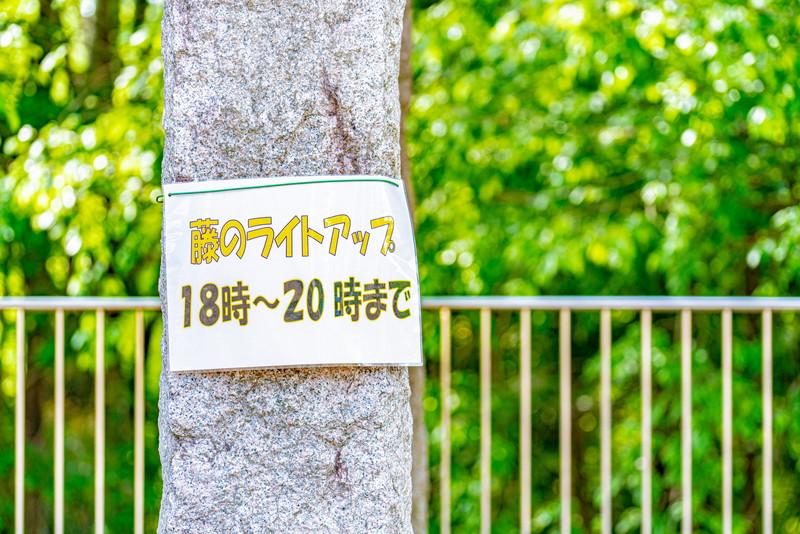 ふじの咲く丘|群馬県藤岡市