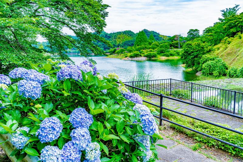 大塩湖 群馬県富岡市
